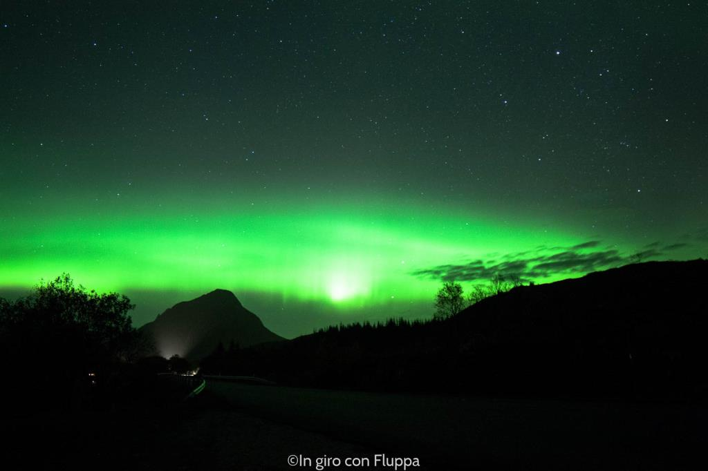 Lofoten Islands - Husvågen lake and the Northern Lights