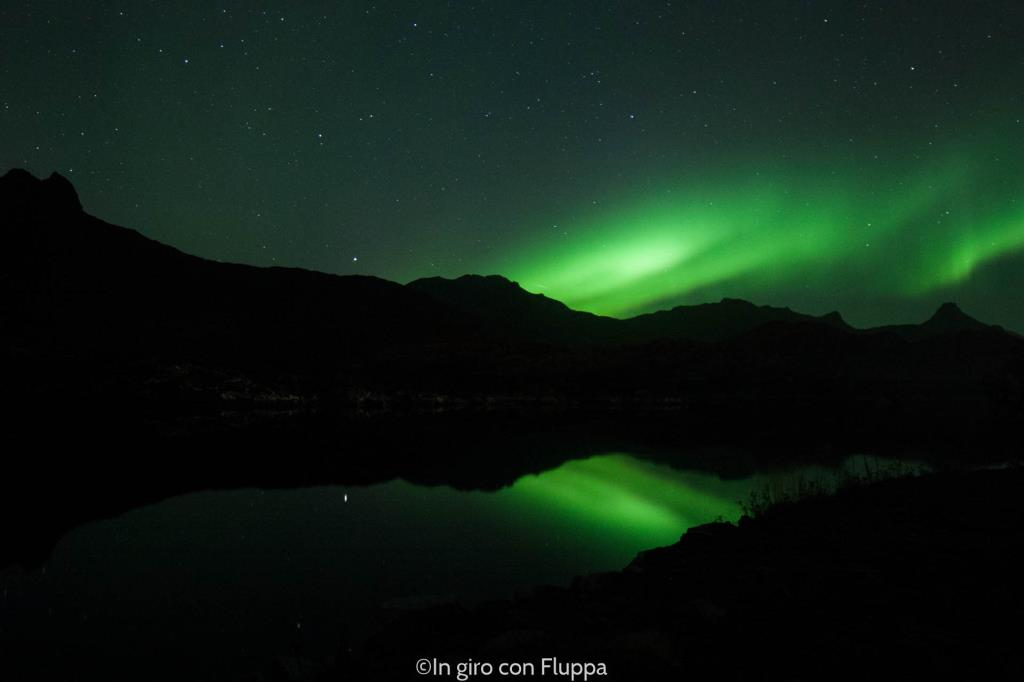 Lofoten Islands - Northern Lights