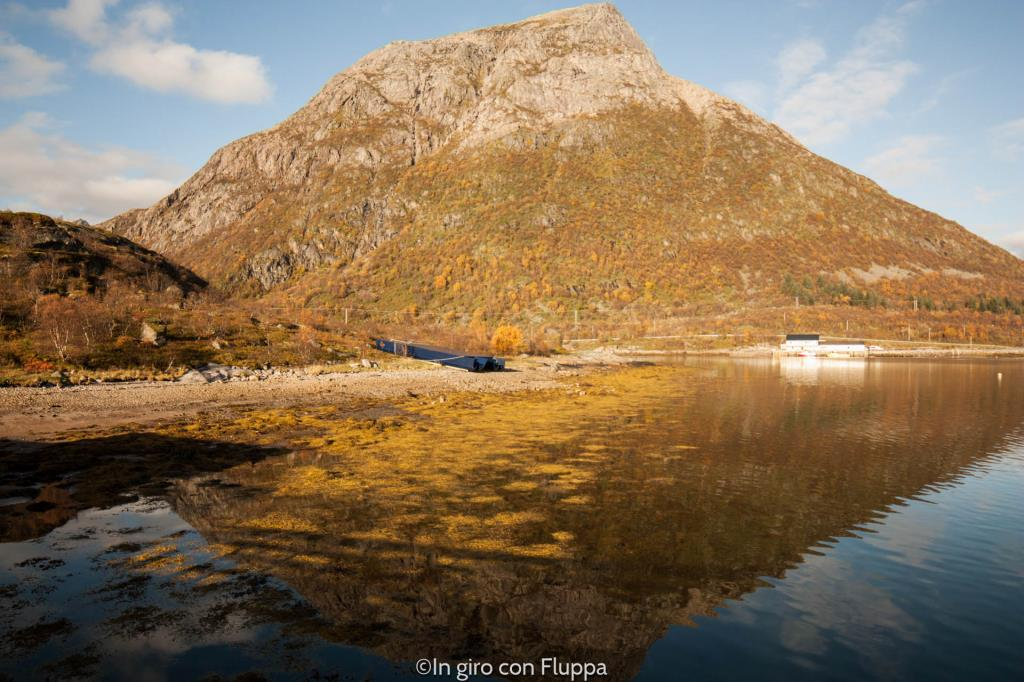 Lofoten Islands- Vaterfjord