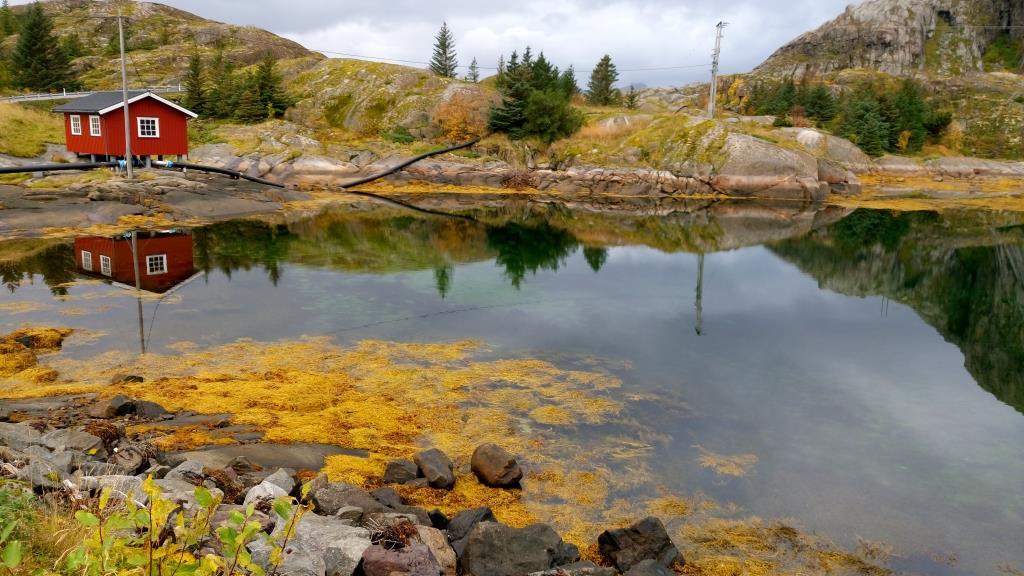 Le isole Lofoten: quando natura e magia s'incontrano! Seconda parte, Reine e dintorni.