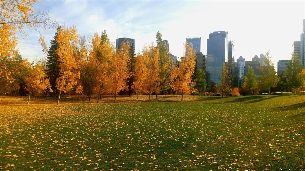Calgary con il sole...
