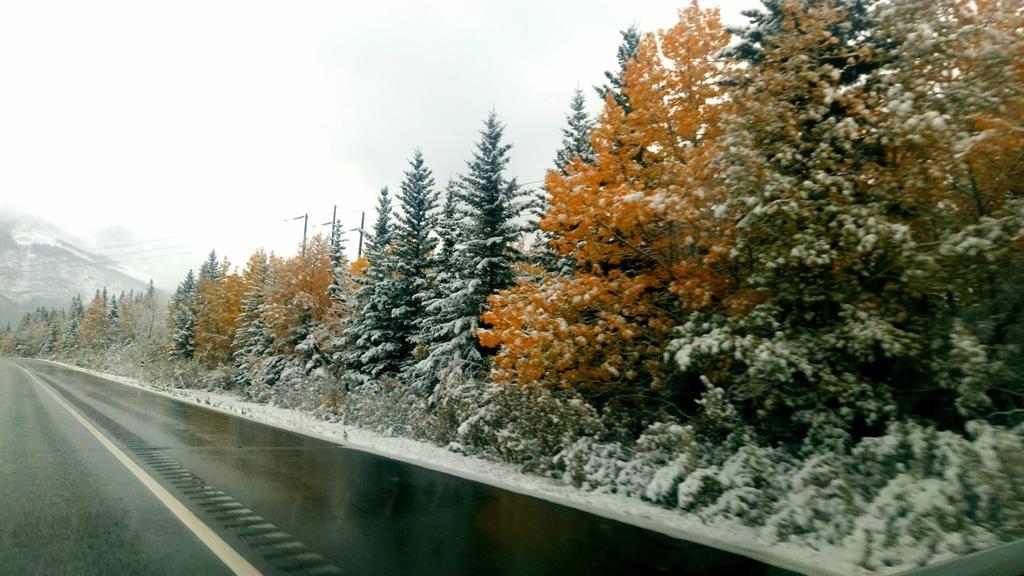 e il giorno dopo, neve!