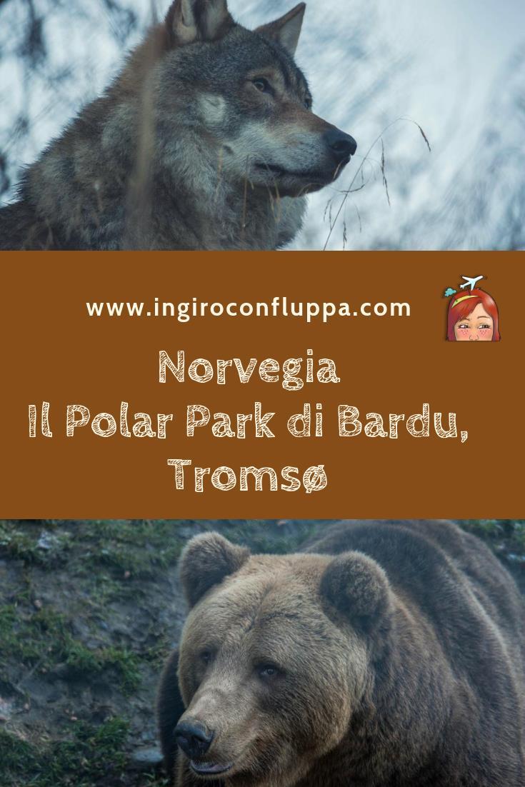 Il Polar Park di Bardu, Tromsø. Salva il post su Pinterest!