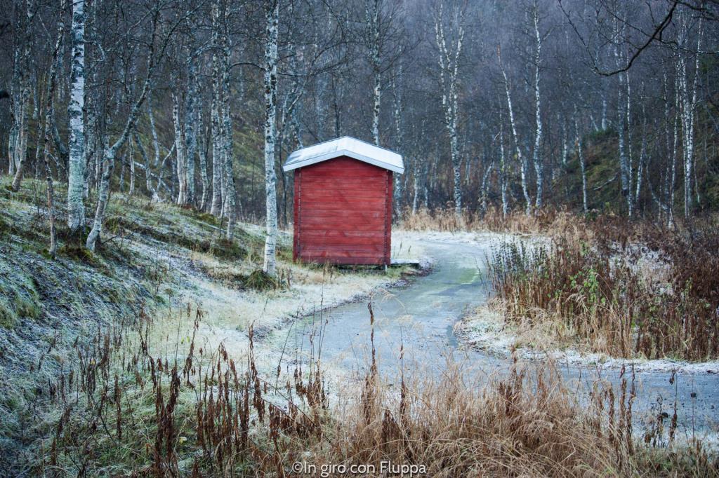 Il Polar Park di Bardu, Tromsø