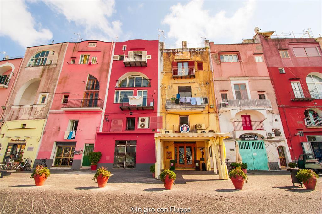 Gite di un giorno da Napoli: Procida, Marina Grande