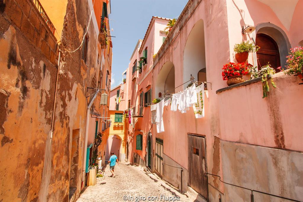 Gite di un giorno da Napoli: Procida, Sammarezio