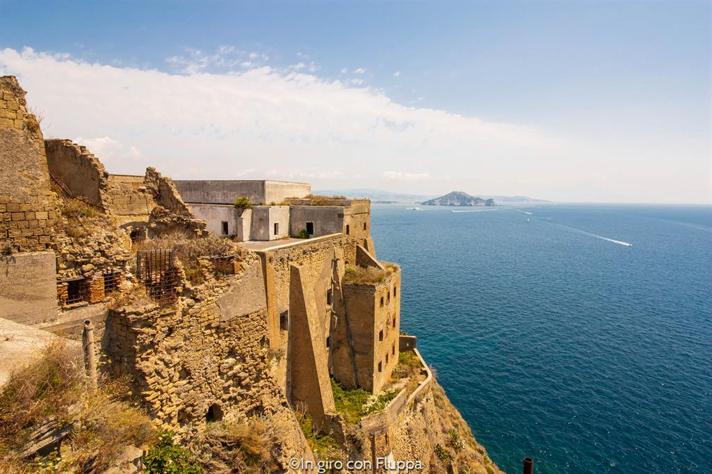 Gite di un giorno da Napoli: Procida, Terra Murata