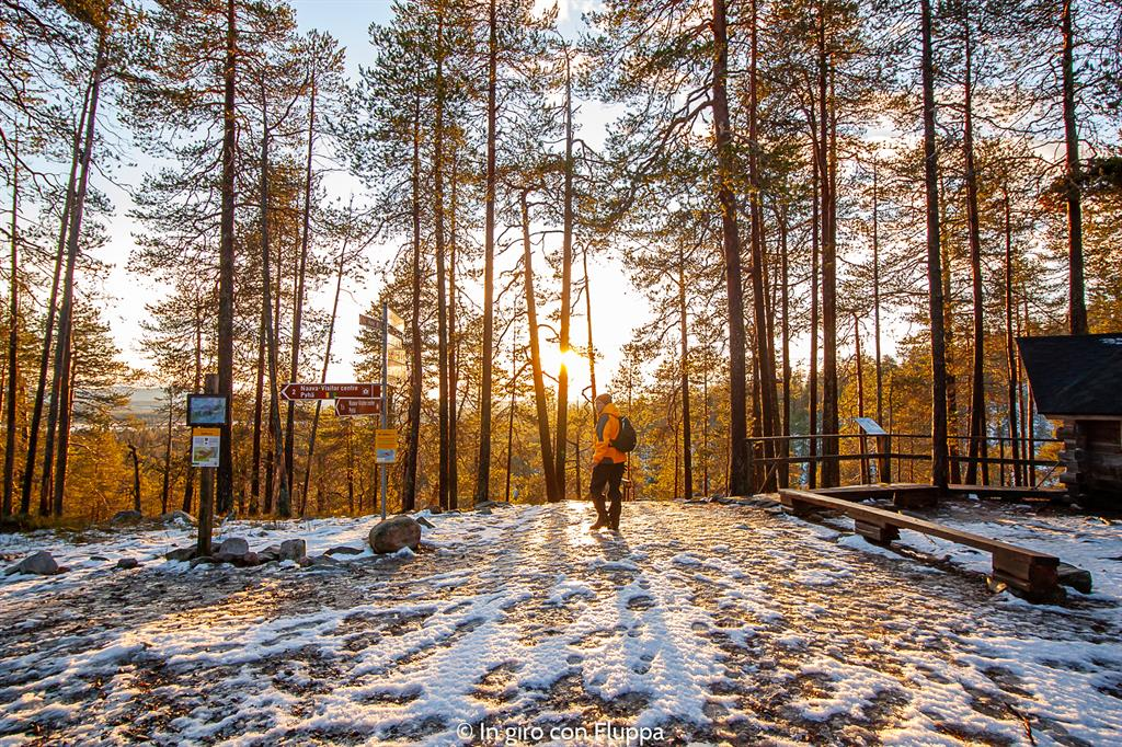 Cosa vedere a Rovaniemi e dintorni: Pyha-Luosto national park