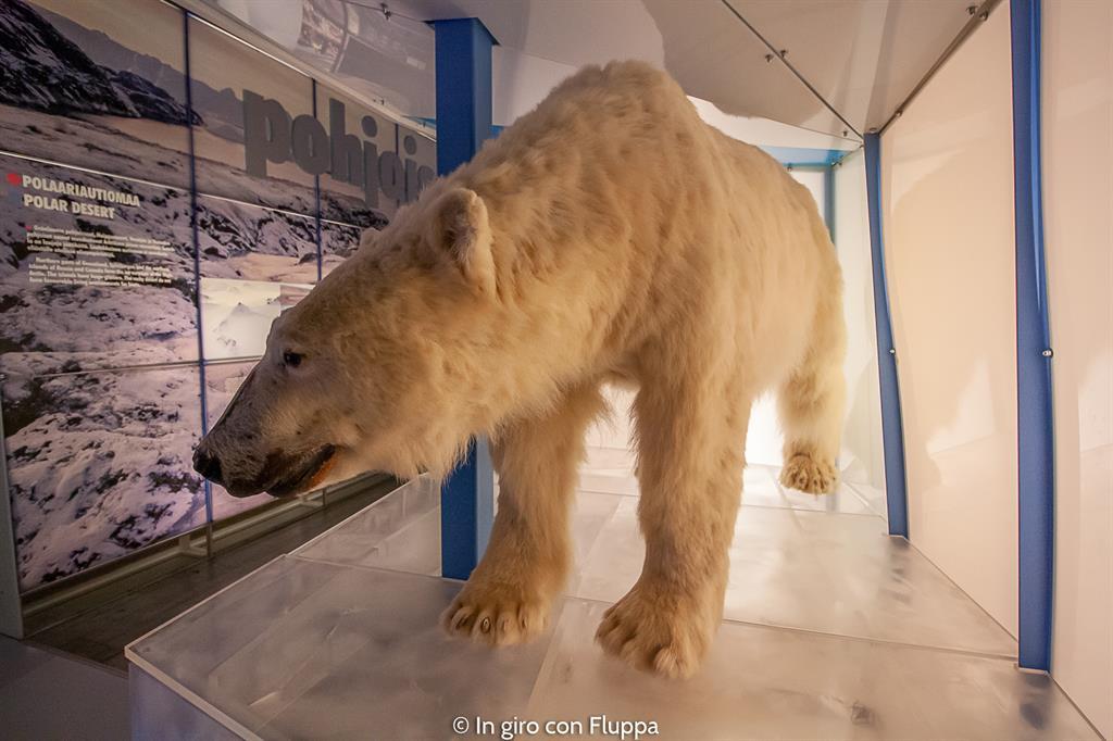 Cosa vedere a Rovaniemi e dintorni: i musei