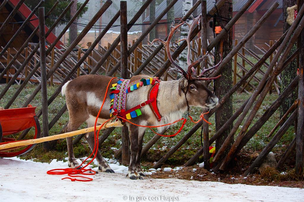 Cosa vedere a Rovaniemi e dintorni: Santa Claus Village