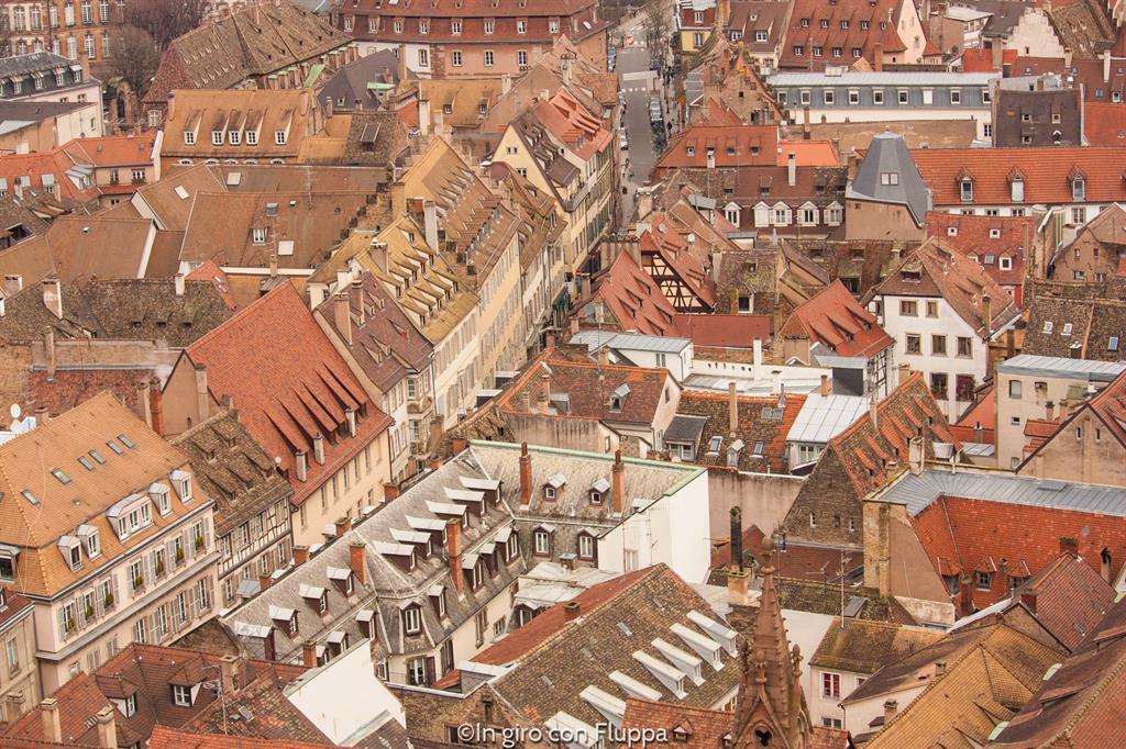Strasburgo dall'alto