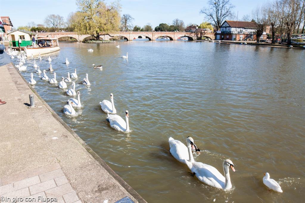 Stratford-upon-Avon, il fiume