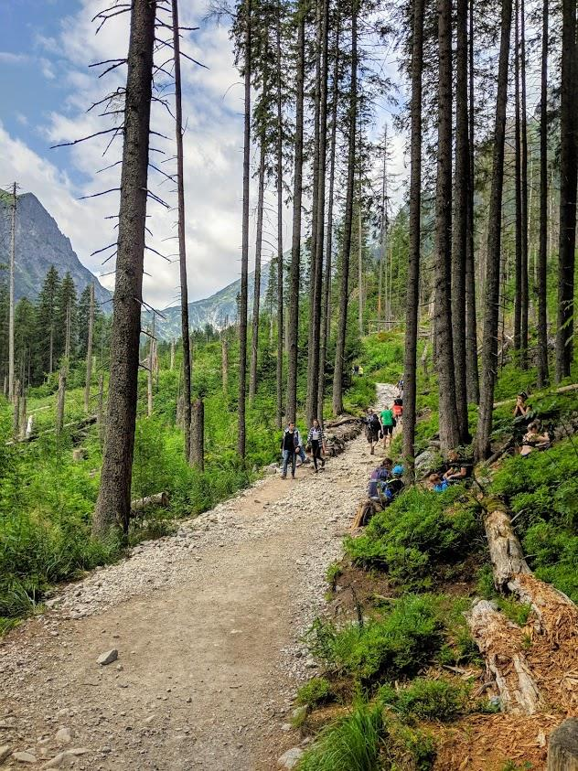 Trekking in Polonia, escursione sui Monti Tatra: sentiero per Dolina Pieciu Stawów