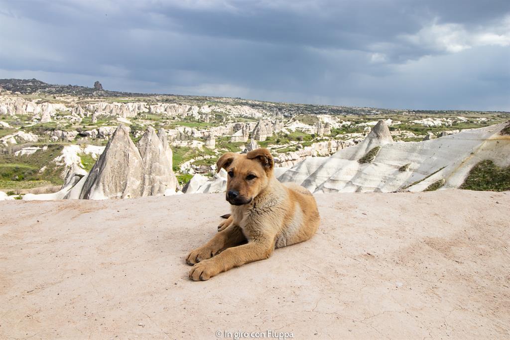 Viaggio in Cappadocia: il tour rosso. Il punto panoramico di Göreme.