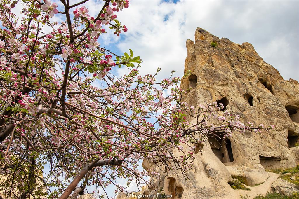 Viaggio in Cappadocia: il tour rosso. Goreme open air musem.