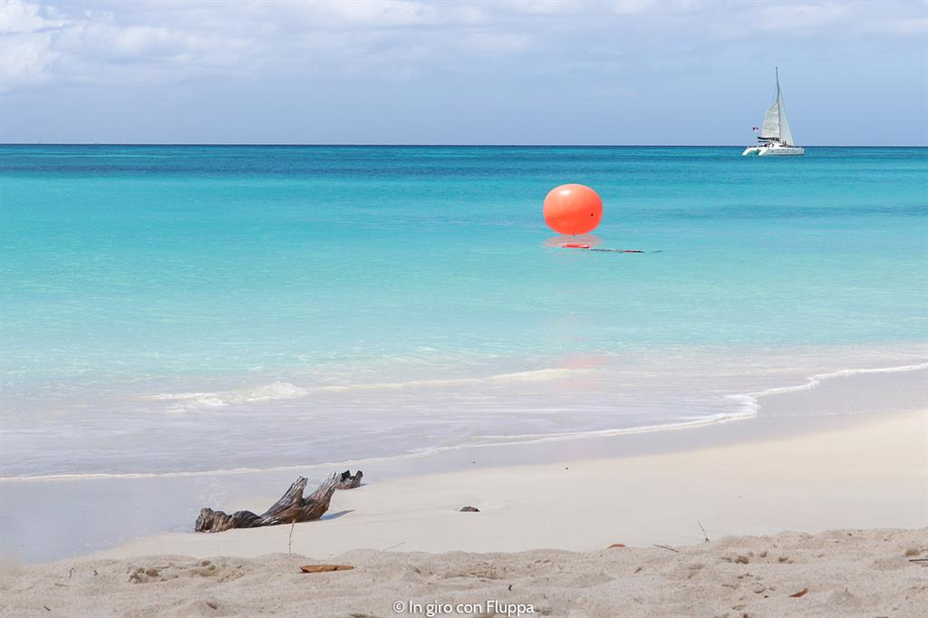 Cosa fare ad Antigua: Ffryes bay