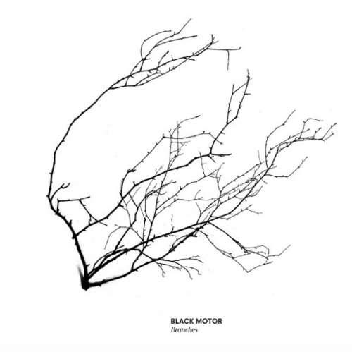 Black Motor Branches Nettikoko