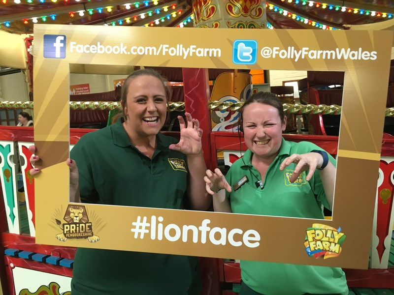 folly farmers lion face world lion day