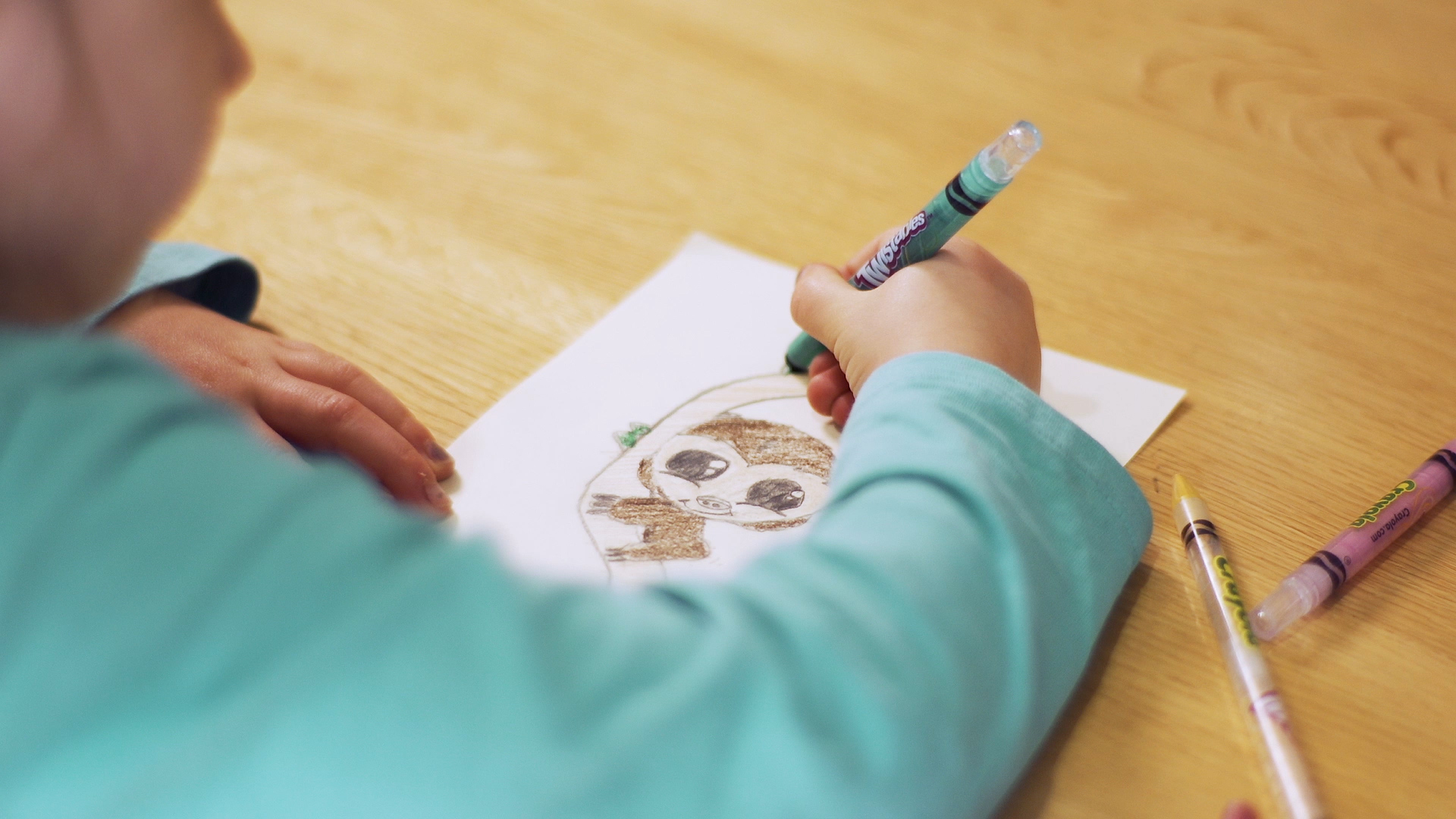 Girl drawing a sloth