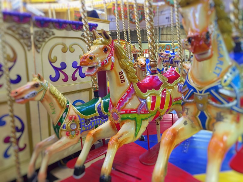 Golden galloper on the carousel