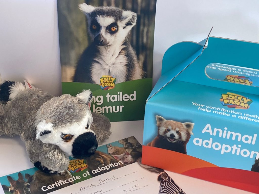 Lemur adoption gift pack