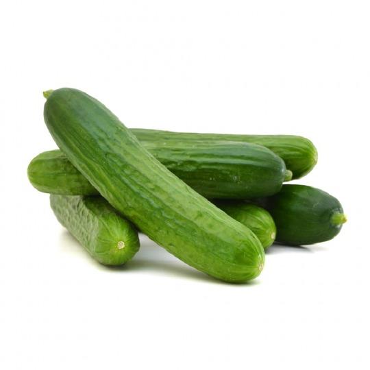 Salatgurke (durchschnittlich)