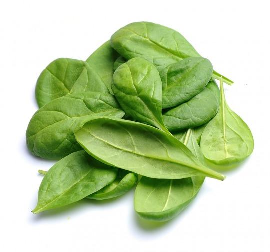 Spinat Kalorien-Nährwerte