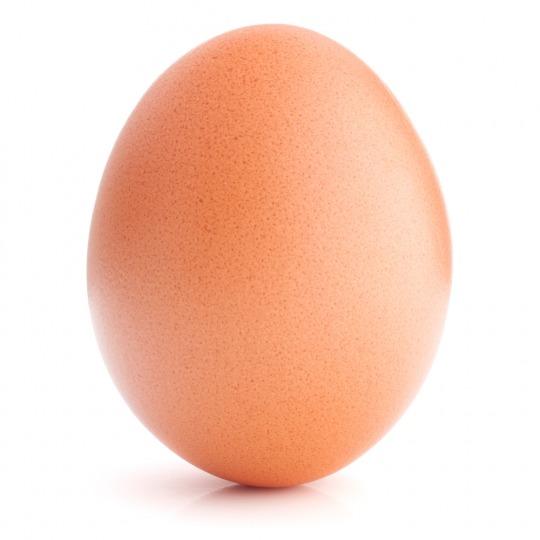 egg Kalorien-Nährwerte