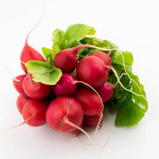 radish Kalorien-Nährwerte