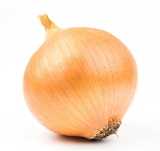 Zwiebel Kalorien-Nährwerte