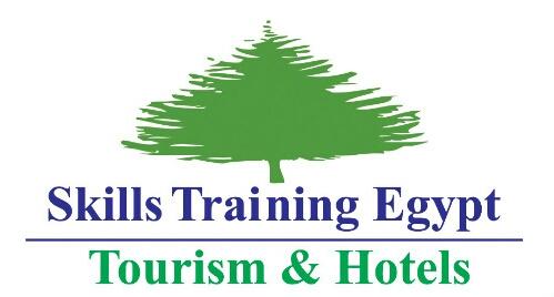لوجو Skills Training egypt