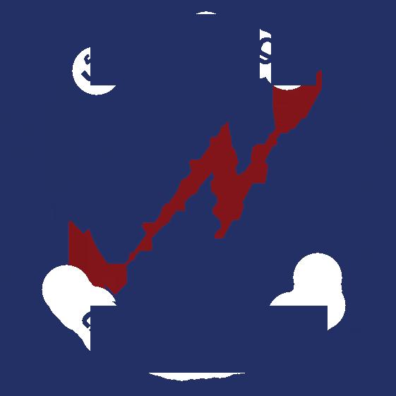 لوجو الدولية للأسلاك و الكابلات الكهربائية