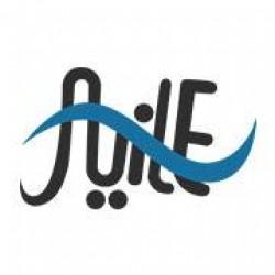 لوجو شركة النيل للوسائط الإعلامية المتعددة
