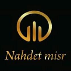 لوجو شركة نهضة مصر للخدمات المتكامله
