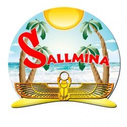 لوجو شركة سالمينا