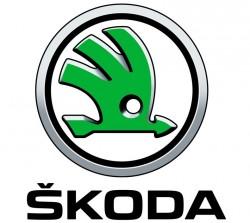 لوجو شركة كيان إيجيبت للتجارة والإستثمار - وكيل سيارات سكودا