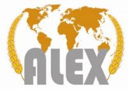 لوجو شركة أسكندريه للاستيراد و التصدير