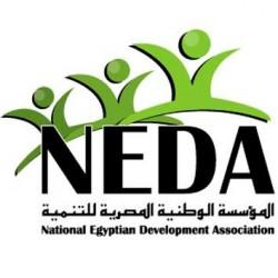 لوجو شركة المؤسسة الوطنية المصرية للتنمية