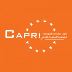 لوجو شركة كابرى - الهولندية المصرية