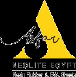 لوجو شركة نيوليت مصر
