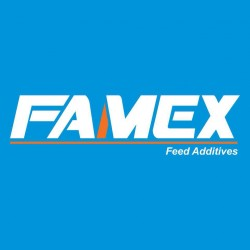 لوجو شركة فاميكس