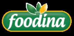 لوجو شركة الاسماعيلية للصناعات الغذائية (فودينا)