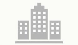 لوجو شركة شركه دبوس فرائد تشكن للاقامه وتشغيل المطاعم