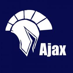 لوجو شركة اجاكس للتدريب والاستشارات والخدمات الالكترونية