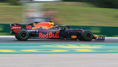 Max Verstappen Red Bull Racing Hungarian Grand Prix