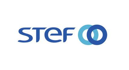 Logo de GROUPE STEF