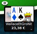 WallaceEtGroNitpourPA.png