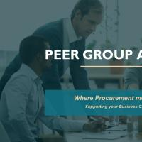 PEER GROUP ALLIANCE