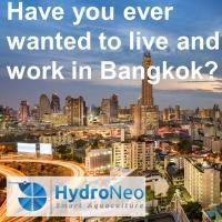 (Senior) Software Developer - opportunity to live and work in Bangkok