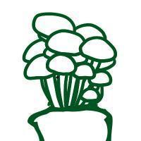 Kellerdieb - Mushrooms Inside -